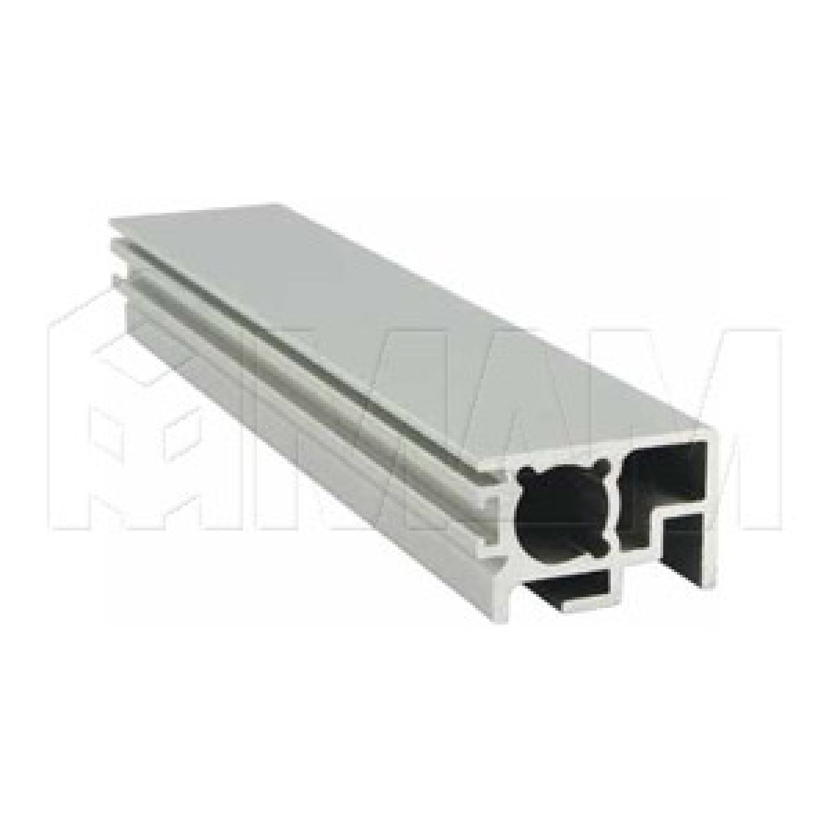 PS19 Вертик. профиль узкий, серебро, L-3000